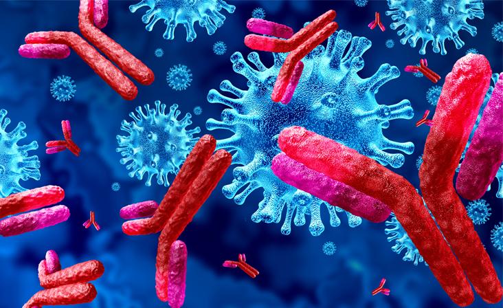 Koroonaviiruse antikehad